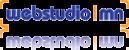 webstudio-mn-logo